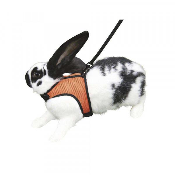 Kaninchengeschirr mit flexibler Leine, 120cm