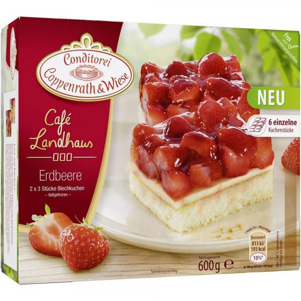 "Blechkuchen ""Café Landhaus"", Erdbeere"