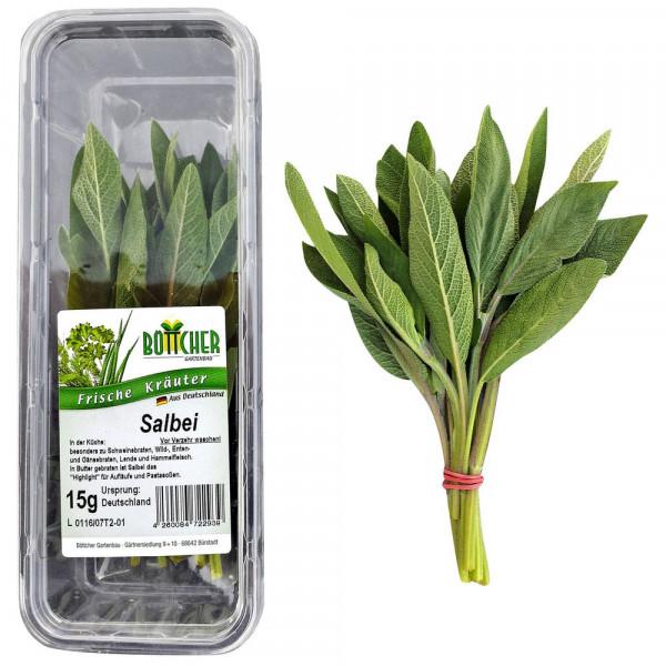 Salbei, Schale