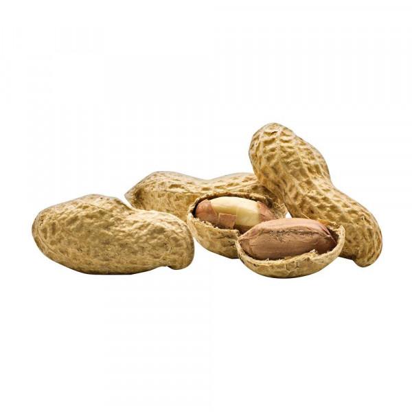 Erdnüsse, in der Schale geröstet