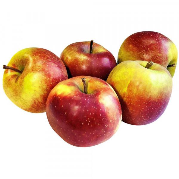 Apfel Boskoop, lose