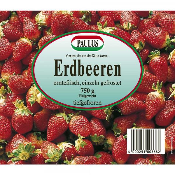 Erdbeeren erntefrisch