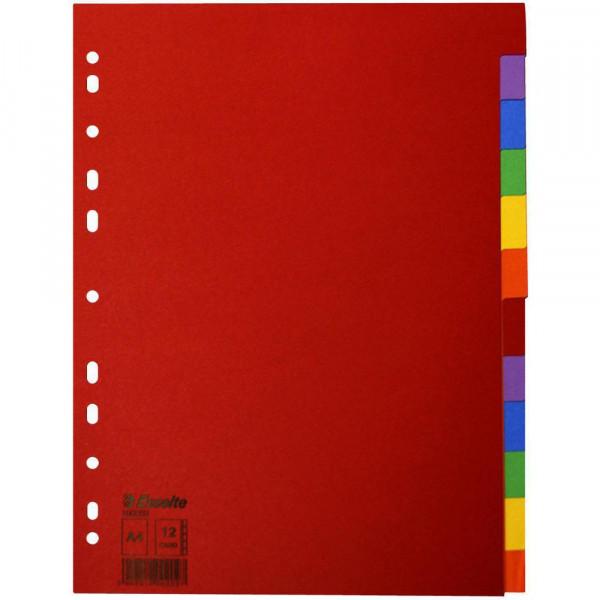 Esselte Register Blanko, Karton, Mehrfarbig
