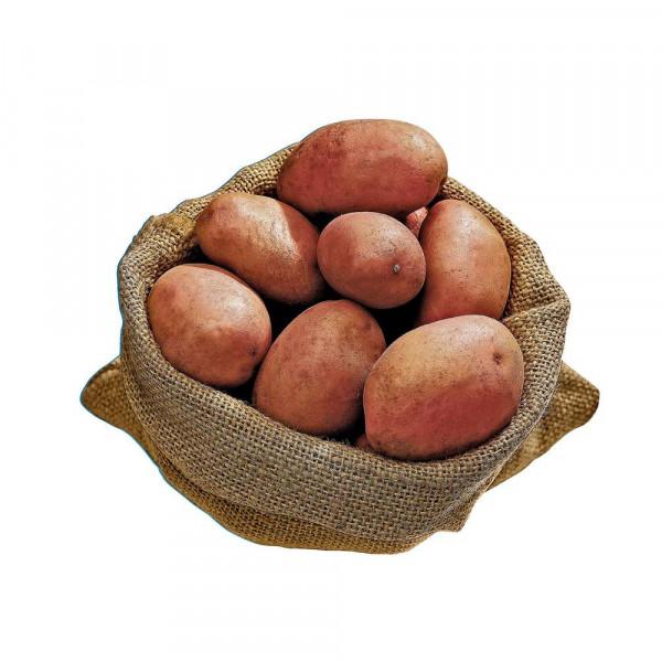 Kartoffeln rotschalig, vorwiegend festkochend, Beutel