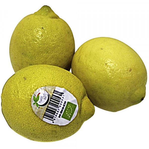 Zitronen Bio, Netz