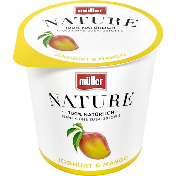 Nature Joghurt Mango