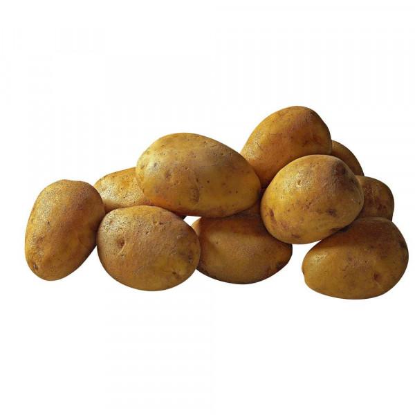 Kartoffeln, mehligkochend