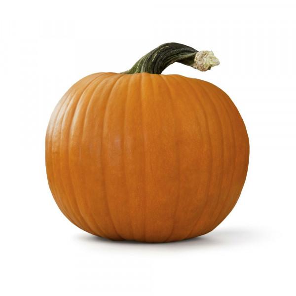 Speisekürbis, Halloween