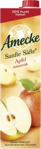 Sanfte Säfte Apfelsaft, naturtrüb (192 x 1 Liter)