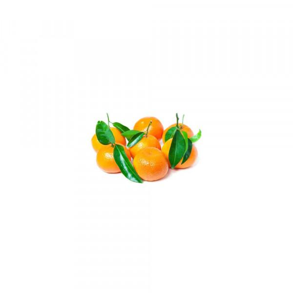 Clementinen mit Blatt, Schale
