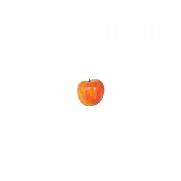 Apfel Holsteiner Cox, lose