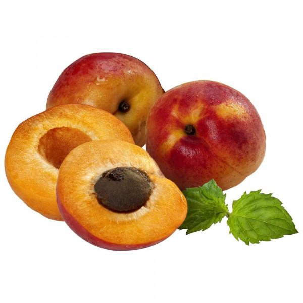 Aprikosen, Ravier