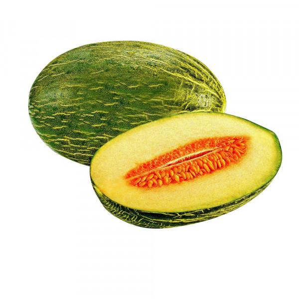 Piel de Sapo Melone