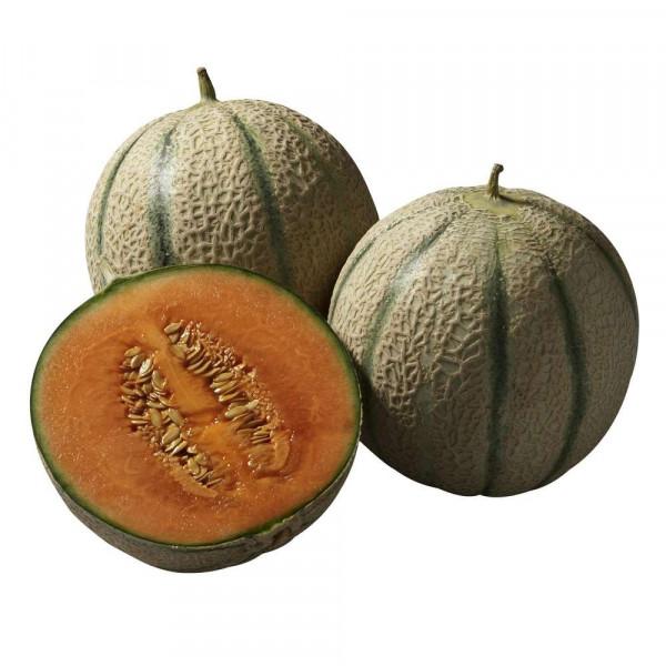 Cantaloup Melone