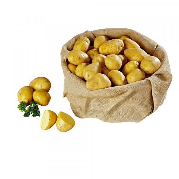 Kartoffeln festkochend, Netz