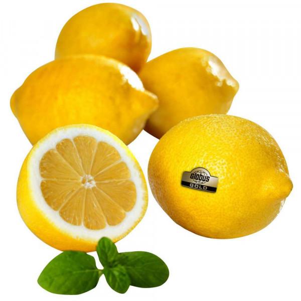 Zitronen, Netz