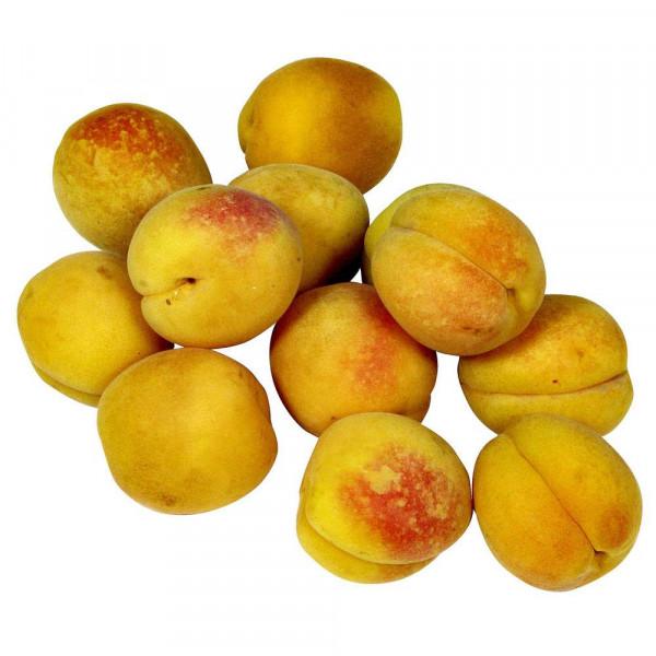 Demeter Bio Aprikosen