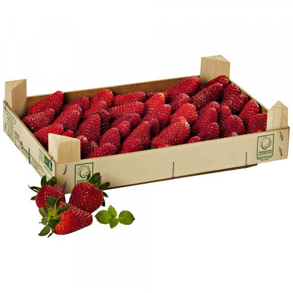 Erdbeeren, Platte