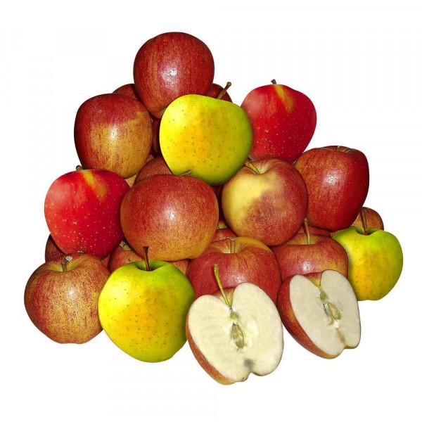 """Apfel """"Braeburn"""", Beutel"""